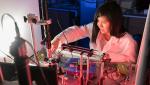 Judith Su working in her lab