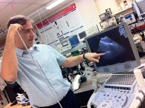 Russell Witte is studying how ultrasound, commonly used for fetal imaging, can be used to capture high-resolution images of brain activity.